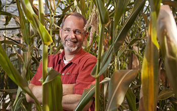 A genetics team is making new discoveries leading to better corn plants.